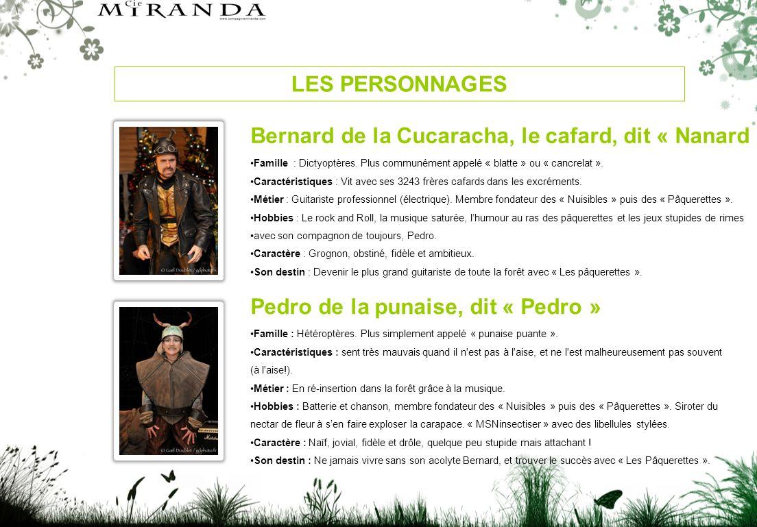 LES PERSONNAGES Bernard de la Cucaracha, le cafard, dit « Nanard » Famille : Dictyoptères.