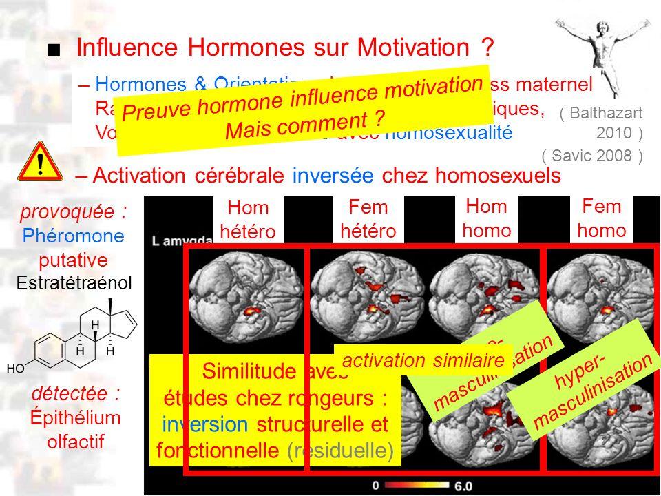 D52 : Modèles : Homme 10 : Renforcement 2 Influence Hormones sur Motivation .