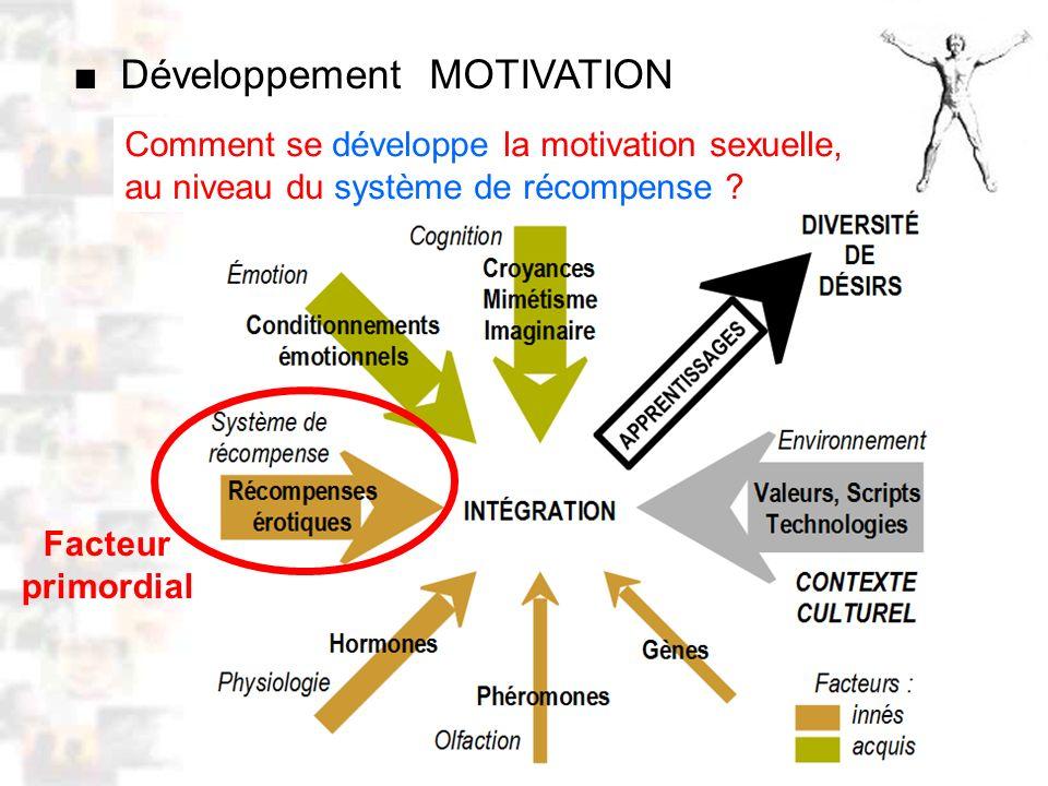 D52 : Modèles : Homme 10 : Renforcement 2 Comment se développe la motivation sexuelle, au niveau du système de récompense .