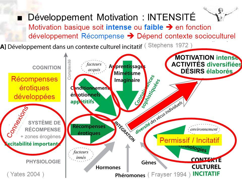 D52 : Modèles : Homme 10 : Renforcement 2 Développement Motivation : INTENSITÉ Motivation basique soit intense ou faible en fonction développement Récompense Dépend contexte socioculturel ( Frayser 1994 ) Permissif / Incitatif ( Stephens 1972 ) ( Yates 2004 ) Connexions Récompenses érotiques développées