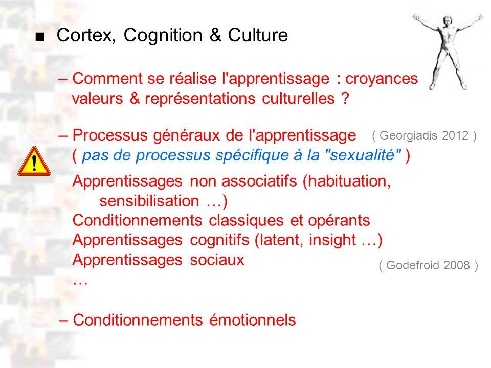 D52 : Modèles : Homme 10 : Renforcement 2 – Comment se réalise l apprentissage : croyances valeurs & représentations culturelles .