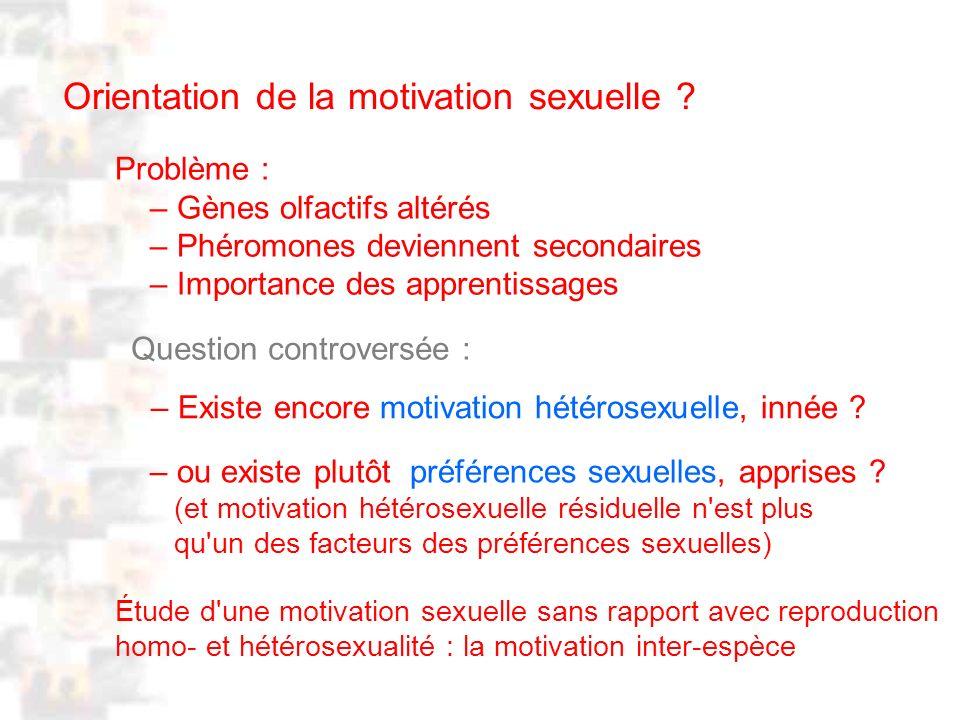 D76 : Modèles : Homme 20 : Développement & Dynamique 8 Orientation de la motivation sexuelle .