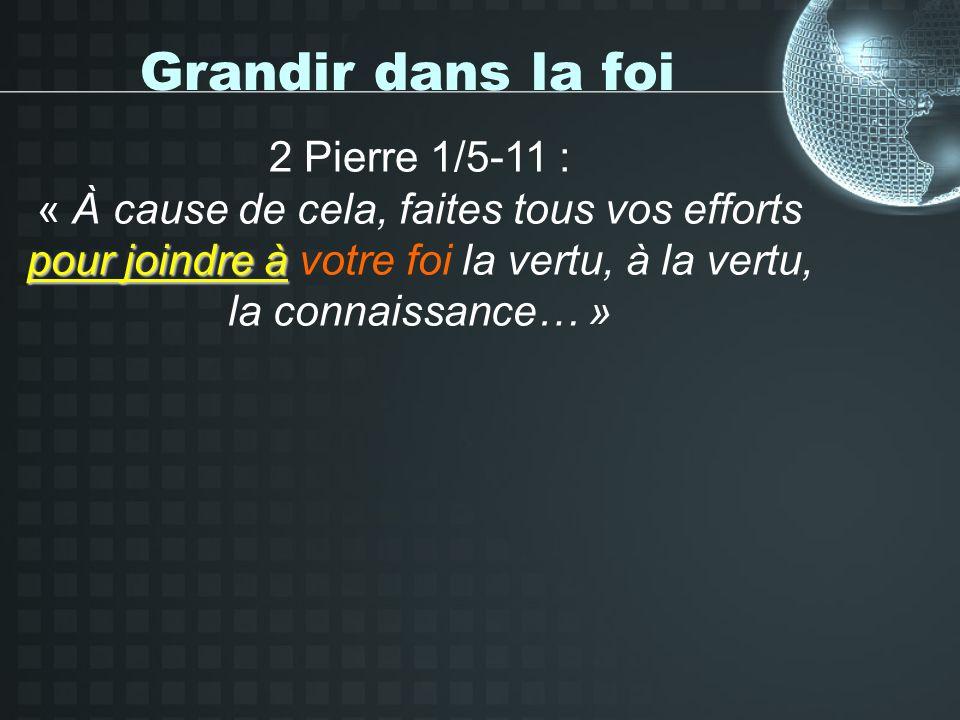 Grandir dans la foi 2 Pierre 1/5-11 : pour joindre à « À cause de cela, faites tous vos efforts pour joindre à votre foi la vertu, à la vertu, la connaissance… »