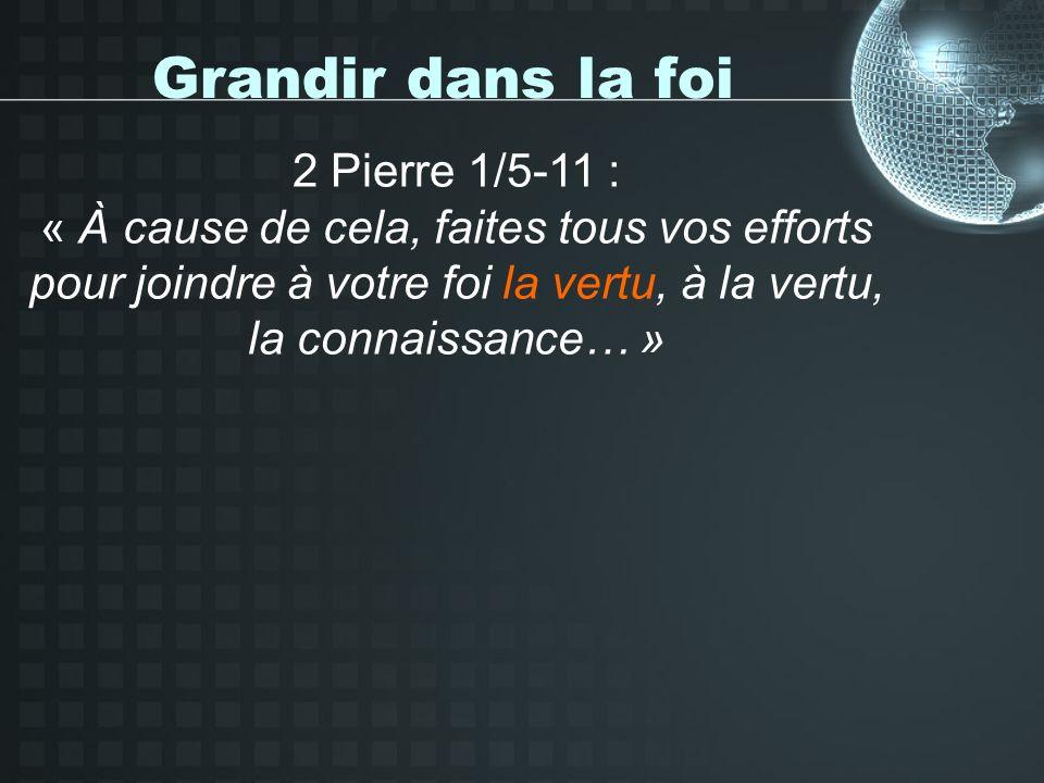 Grandir dans la foi 2 Pierre 1/5-11 : « À cause de cela, faites tous vos efforts pour joindre à votre foi la vertu, à la vertu, la connaissance… »