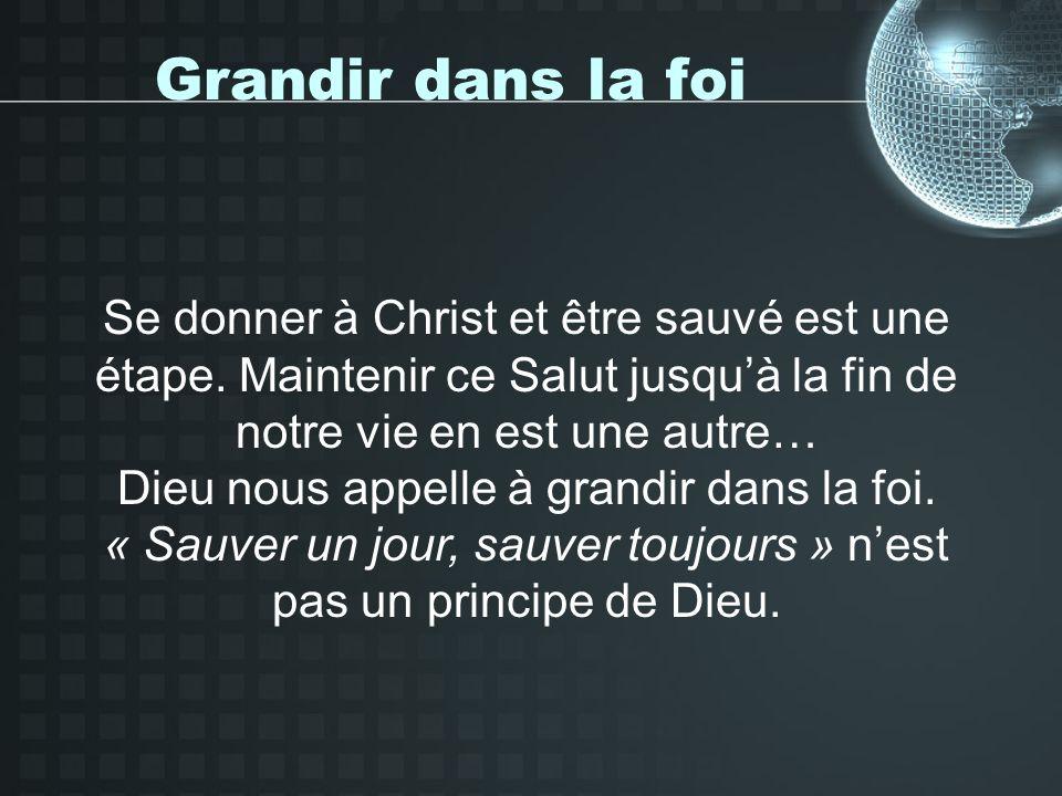 Grandir dans la foi 2 Pierre 1/5-11 : « à la fraternité, lamour… »