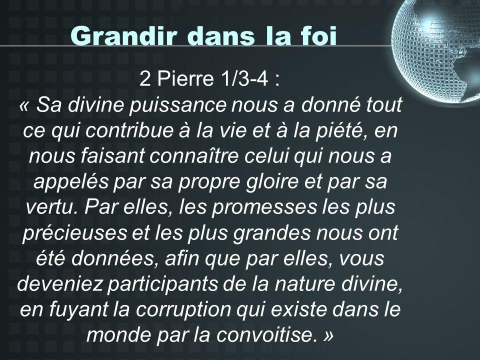 Grandir dans la foi 2 Pierre 1/5-11 : « à la piété, la fraternité… » La communion fraternelle, dans le grec original, cest ma contribution volontaire à être en relation avec les autres.