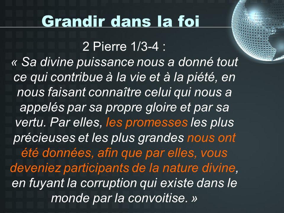 Grandir dans la foi 2 Pierre 1/3-4 : « Sa divine puissance nous a donné tout ce qui contribue à la vie et à la piété, en nous faisant connaître celui qui nous a appelés par sa propre gloire et par sa vertu.