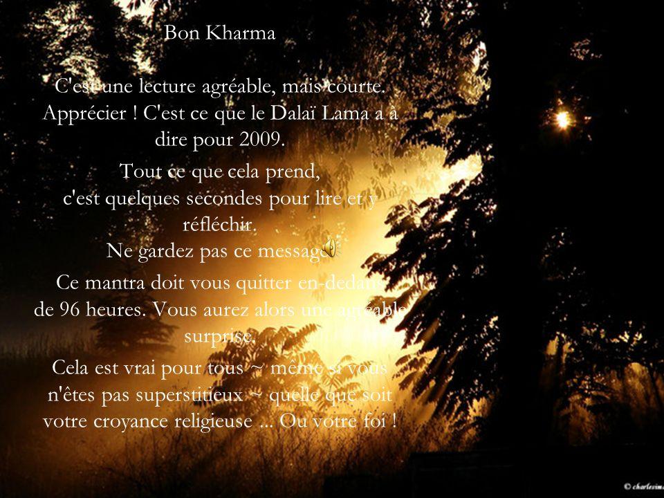 Bon Kharma C est une lecture agréable, mais courte.