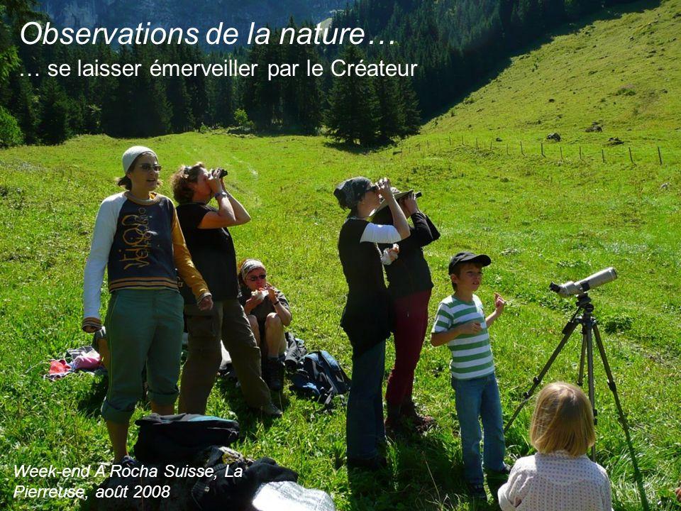 Observations de la nature… … se laisser émerveiller par le Créateur Week-end A Rocha Suisse, La Pierreuse, août 2008
