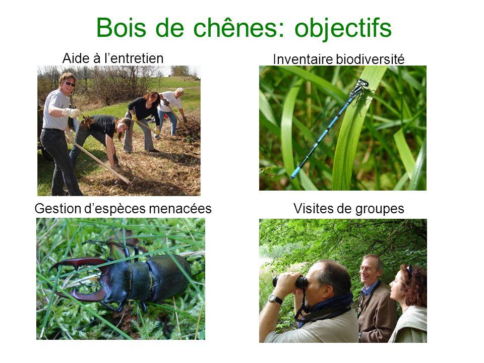Bois de chênes: objectifs Aide à lentretien Inventaire biodiversité Gestion despèces menacéesVisites de groupes