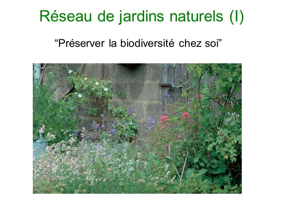 Réseau de jardins naturels (I) Préserver la biodiversité chez soi