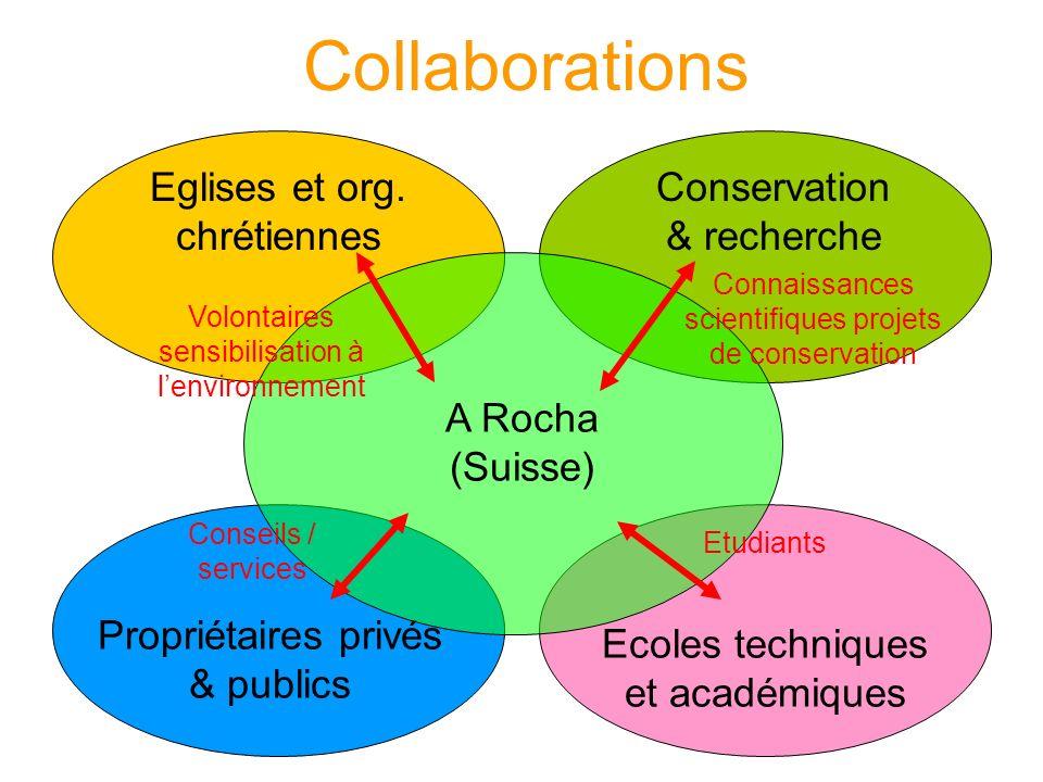 Collaborations Conservation & recherche Eglises et org.