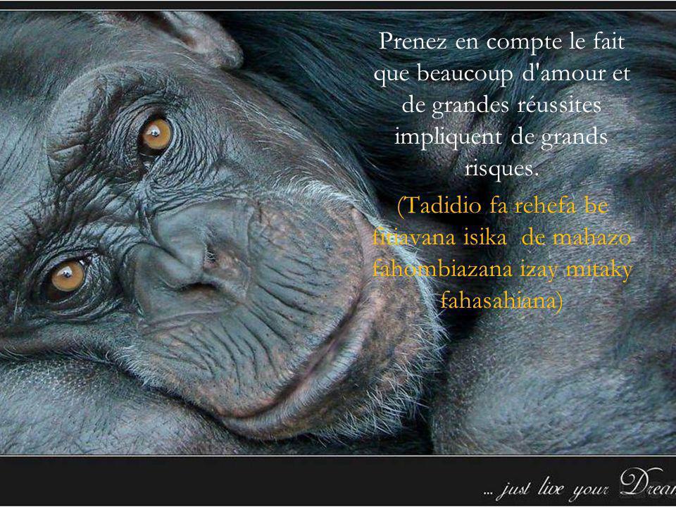 Jerry rand Faly miarahabanareo tonga manatrika izao B.B.S (BUILIDING BUSINESS SEMINAR) Madagascar www.healthytie.com