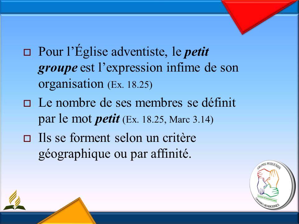 Pour lÉglise adventiste, le petit groupe est lexpression infime de son organisation (Ex.