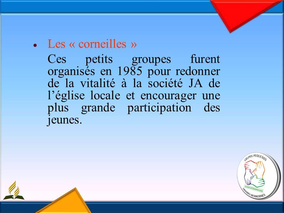 Les « corneilles » Ces petits groupes furent organisés en 1985 pour redonner de la vitalité à la société JA de léglise locale et encourager une plus grande participation des jeunes.