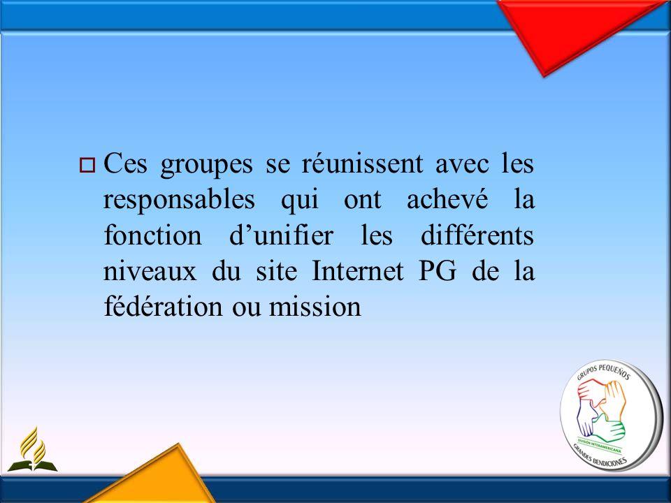 Ces groupes se réunissent avec les responsables qui ont achevé la fonction dunifier les différents niveaux du site Internet PG de la fédération ou mission