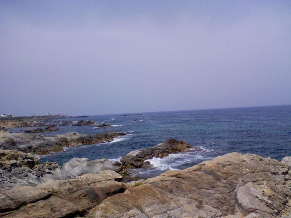 Avec l amour retrouvé Walid mon fils ainé sur la plage de Cavallo, photo surprise