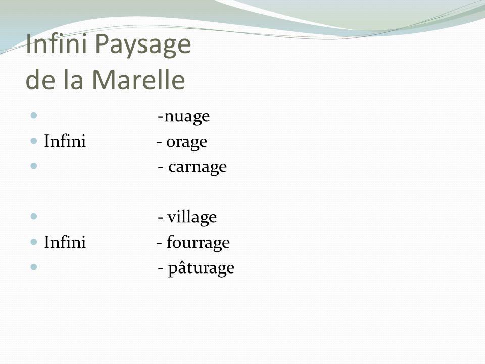 Infini Paysage de la Marelle -nuage Infini - orage - carnage - village Infini - fourrage - pâturage