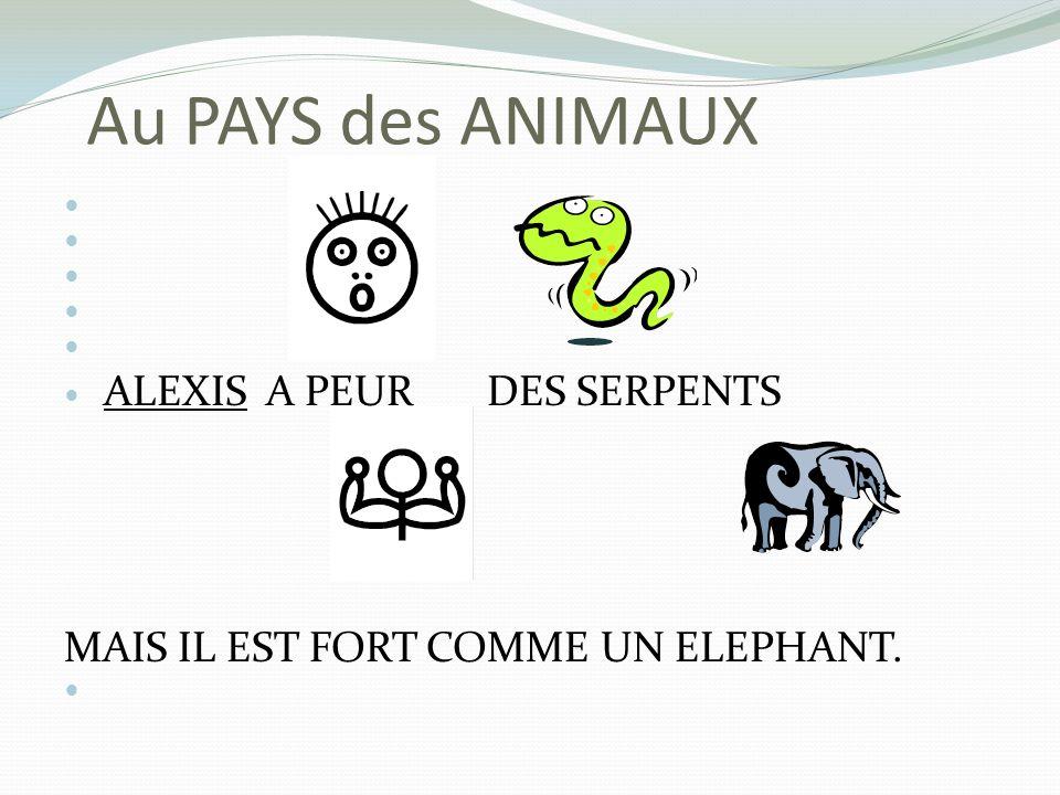 Au PAYS des ANIMAUX ALEXIS A PEUR DES SERPENTS MAIS IL EST FORT COMME UN ELEPHANT.