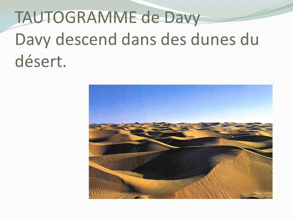 TAUTOGRAMME de Davy Davy descend dans des dunes du désert.