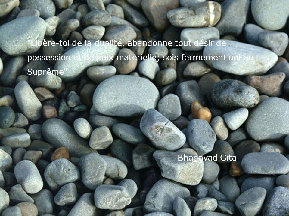 Libère-toi de la dualité, abandonne tout désir de possession et de paix matérielle; sois fermement uni au Suprême Bhagavad Gita