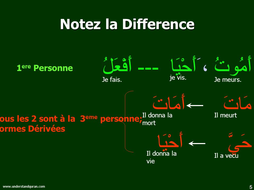 5 www.understandquran.com Notez la Difference أَمُوتُ ، َأَحْيَا --- أَفْعَلُ مَاتَ أَمَاتَ حَيَّ أَحْيَا Tous les 2 sont à la 3 eme personne; Formes