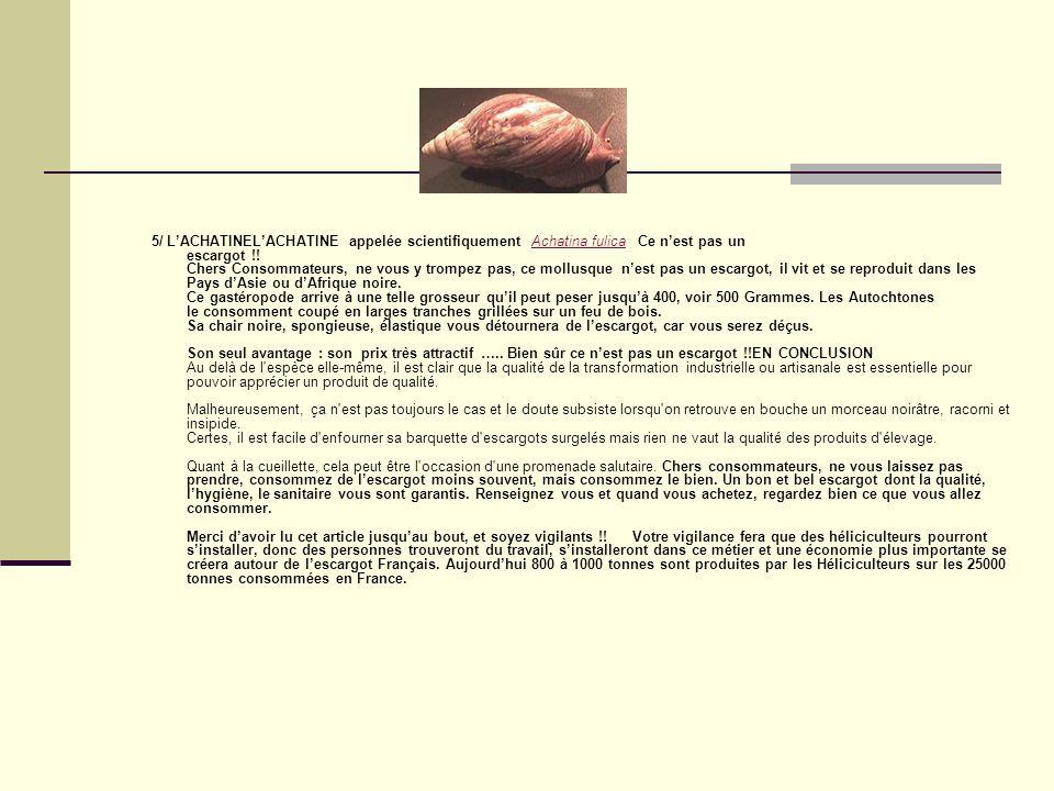 5/ LACHATINELACHATINE appelée scientifiquement Achatina fulica Ce nest pas un escargot !.