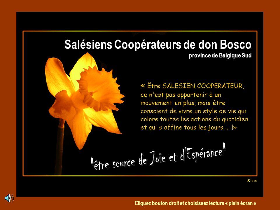 Salésiens Coopérateurs de don Bosco province de Belgique Sud « Être SALESIEN COOPERATEUR, ce n'est pas appartenir à un mouvement en plus, mais être co