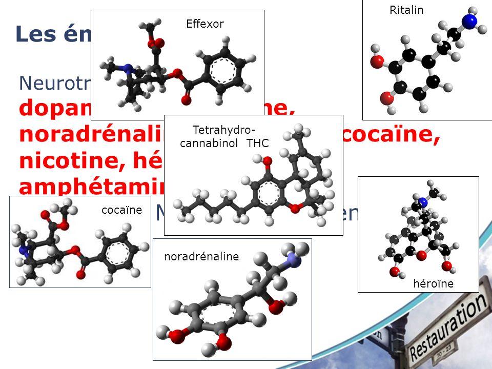 Les émotions Neurotransmetteur dopamine, sérotonine, noradrénaline, morphine, cocaïne, nicotine, héroïne, caféine, amphétamine. Ce sont des Modulateur