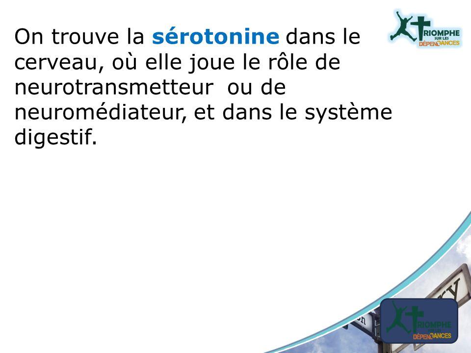 On trouve la sérotonine dans le cerveau, où elle joue le rôle de neurotransmetteur ou de neuromédiateur, et dans le système digestif.