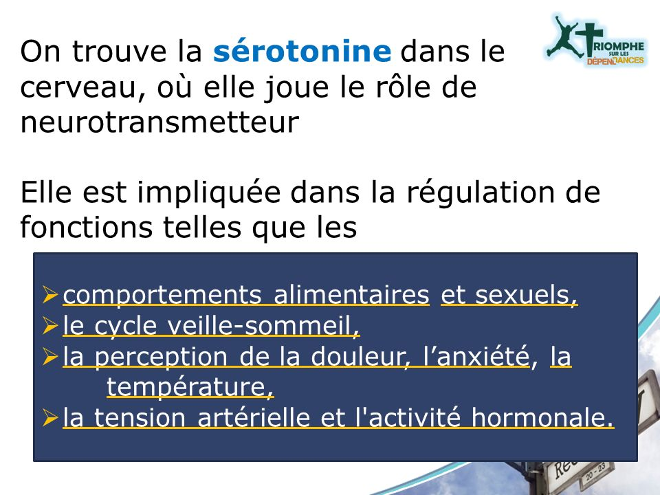 On trouve la sérotonine dans le cerveau, où elle joue le rôle de neurotransmetteur Elle est impliquée dans la régulation de fonctions telles que les c