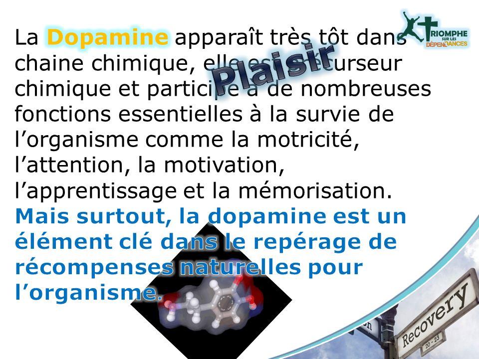 La dopamine participe aussi à la mémorisation (inconsciente) des indices associés à ces récompenses.