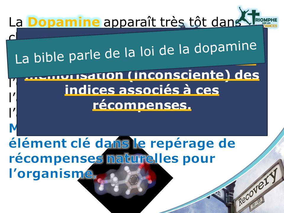 La bible parle de la loi de la dopamine