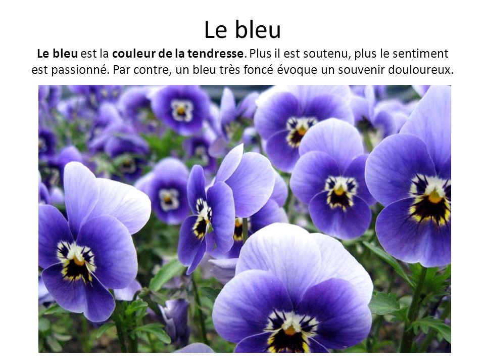 Le bleu Le bleu est la couleur de la tendresse. Plus il est soutenu, plus le sentiment est passionné. Par contre, un bleu très foncé évoque un souveni