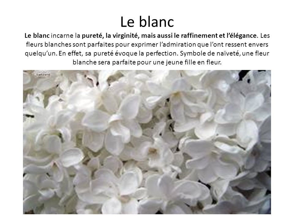 Le blanc Le blanc incarne la pureté, la virginité, mais aussi le raffinement et lélégance. Les fleurs blanches sont parfaites pour exprimer ladmiratio