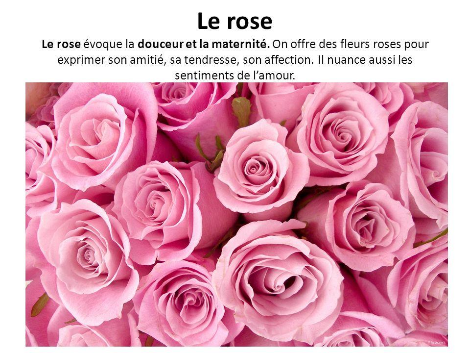 Le rose Le rose évoque la douceur et la maternité. On offre des fleurs roses pour exprimer son amitié, sa tendresse, son affection. Il nuance aussi le