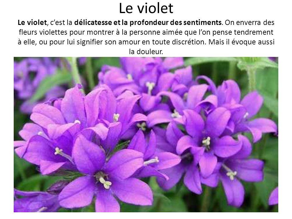Le violet Le violet, cest la délicatesse et la profondeur des sentiments. On enverra des fleurs violettes pour montrer à la personne aimée que lon pen