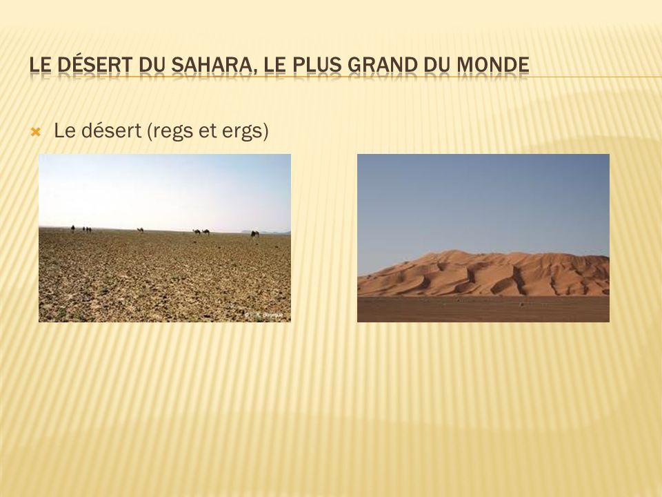 Le désert (regs et ergs)