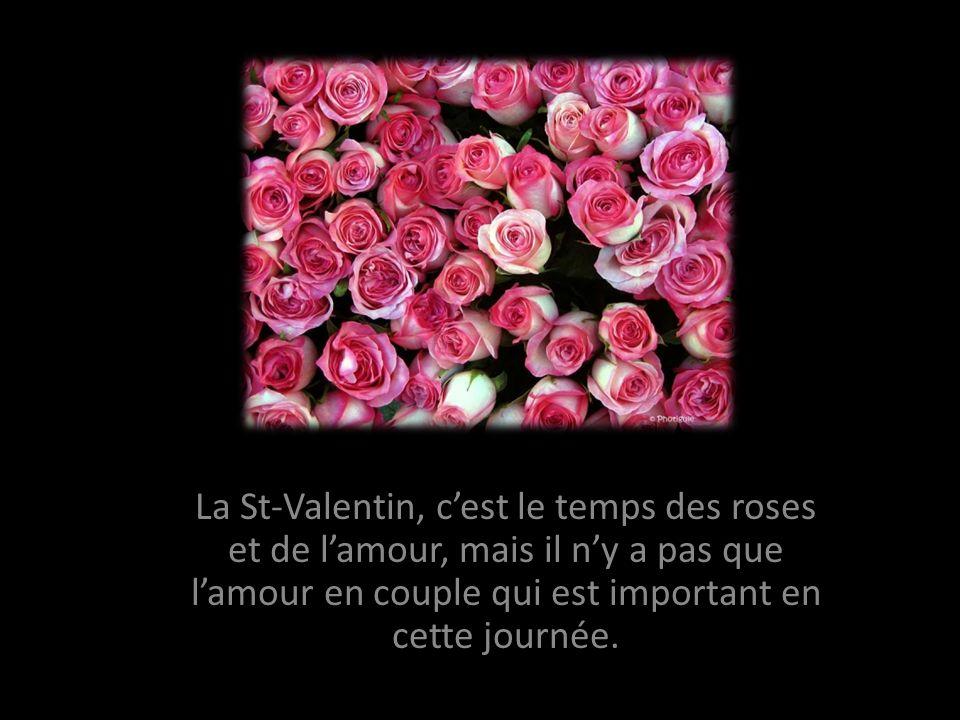 La St-Valentin, cest le temps des roses et de lamour, mais il ny a pas que lamour en couple qui est important en cette journée.