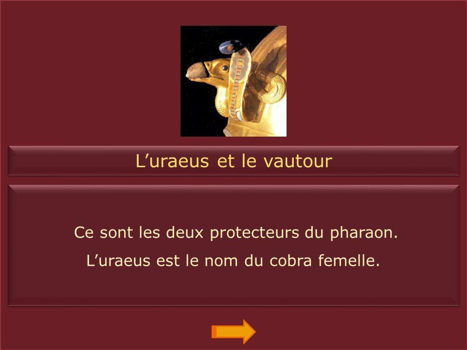 La double couronne (pschent) Elle symbolise le pouvoir du pharaon sur les deux terres : La Basse-Egypte et la Haute-Egypte. Elle symbolise le pouvoir