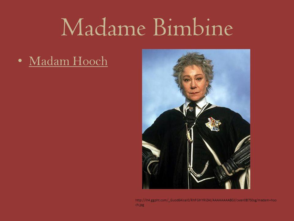 Madame Bimbine Madam Hooch http://lh4.ggpht.com/_Guod6Aisal0/RhFGHYRlZAI/AAAAAAAABGI/cwan0B7S0sg/madam+hoo ch.jpg