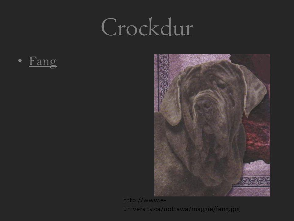 Crockdur Fang http://www.e- university.ca/uottawa/maggie/fang.jpg