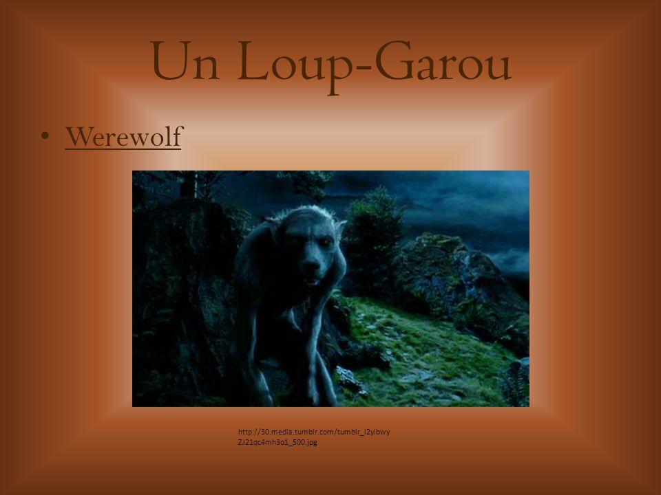 Un Loup-Garou Werewolf http://30.media.tumblr.com/tumblr_l2yibwy ZJ21qc4mh3o1_500.jpg