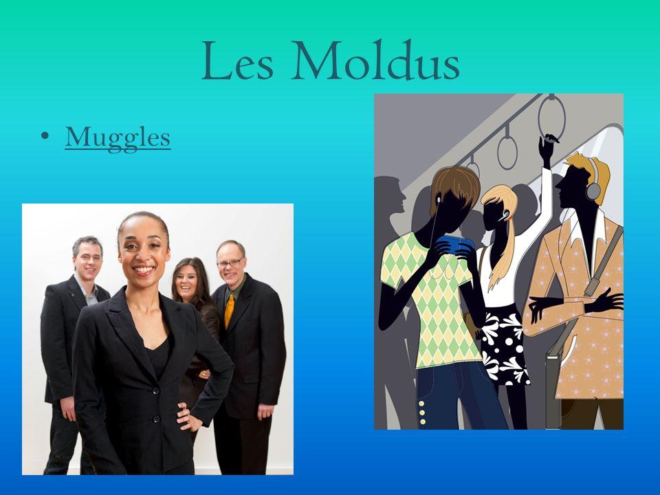Les Moldus Muggles