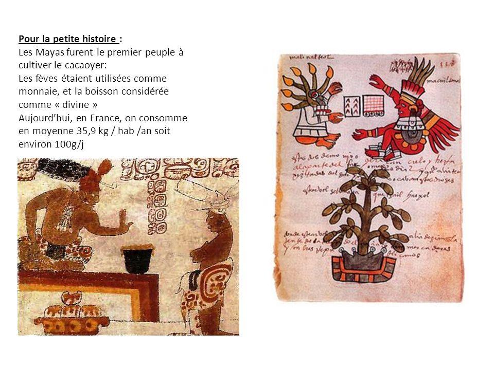 Pour la petite histoire : Les Mayas furent le premier peuple à cultiver le cacaoyer: Les fèves étaient utilisées comme monnaie, et la boisson considérée comme « divine » Aujourdhui, en France, on consomme en moyenne 35,9 kg / hab /an soit environ 100g/j