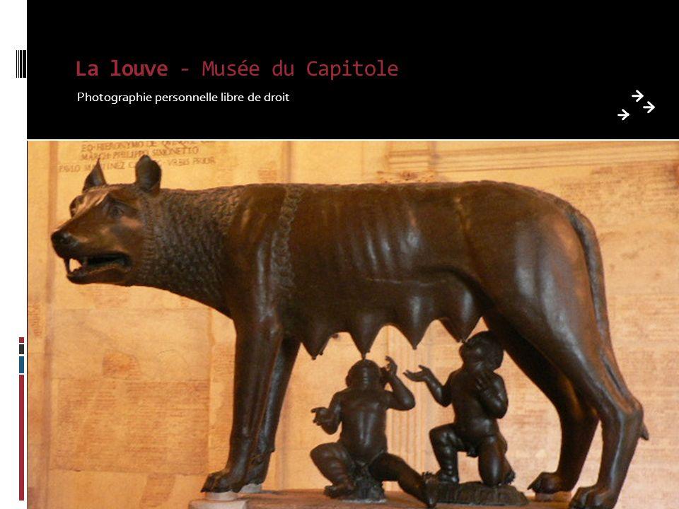 La louve - Musée du Capitole Photographie personnelle libre de droit