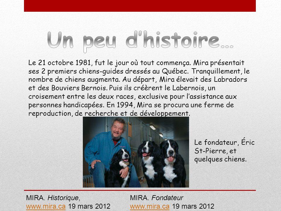 Le 21 octobre 1981, fut le jour où tout commença. Mira présentait ses 2 premiers chiens-guides dressés au Québec. Tranquillement, le nombre de chiens