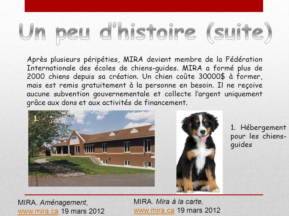 Après plusieurs péripéties, MIRA devient membre de la Fédération Internationale des écoles de chiens-guides. MIRA a formé plus de 2000 chiens depuis s