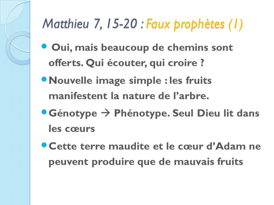 Matthieu 7, 15-20 : Faux prophètes (1) Oui, mais beaucoup de chemins sont offerts.