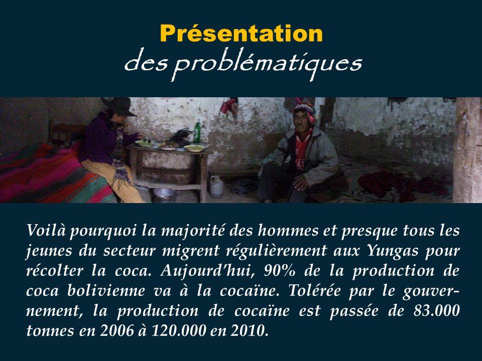 Voilà pourquoi la majorité des hommes et presque tous les jeunes du secteur migrent régulièrement aux Yungas pour récolter la coca.